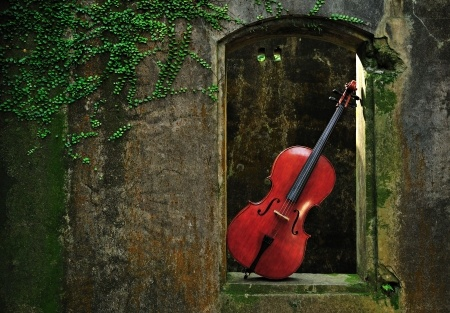 Cello Alone